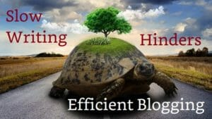 Efficient Blogging Hindered By Slow Writing